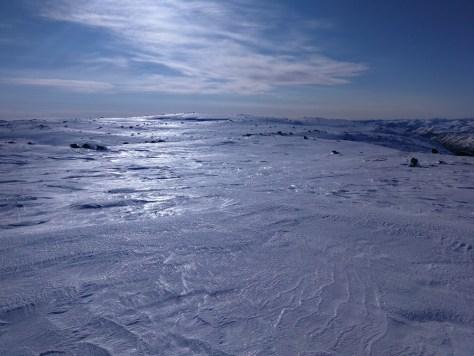 lodowy skituring