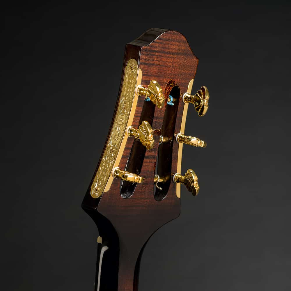 Theo Scharpach Guitars
