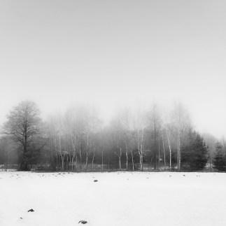 silence9-04
