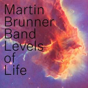 Martin Brunner Band aneb Levels of Life of 80´s
