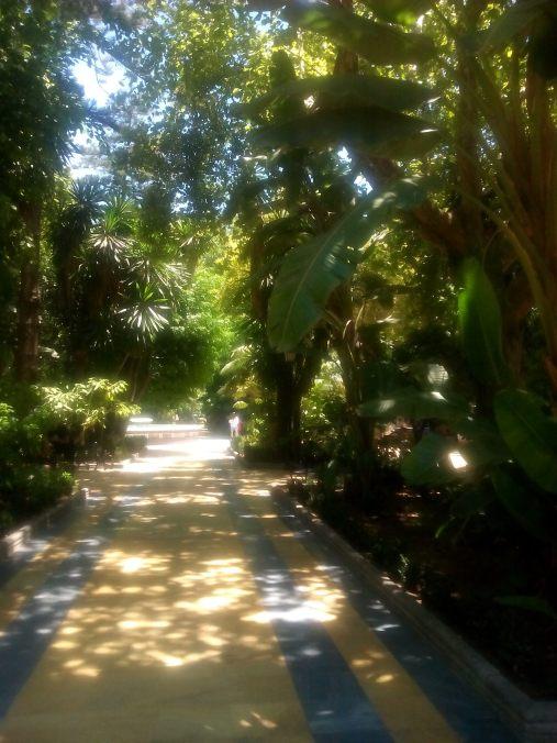 Alemeida Parque