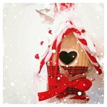 add Snow to birdhouse