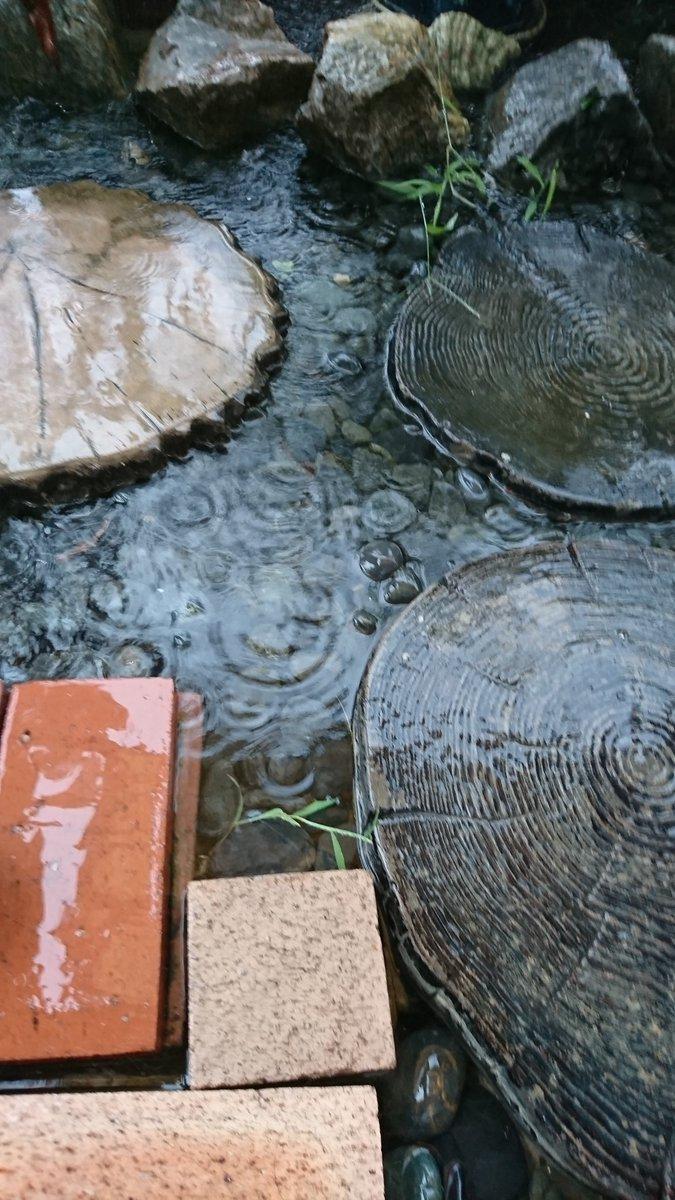 大雨でプールになった自宅のベランダ