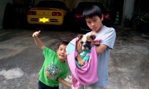 長男坊&次男坊&三男坊。2011年の写真。