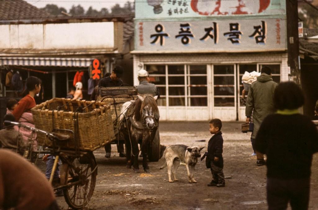 Korean Boy & Dog (1967)