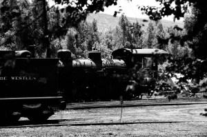 Steam Engine in Station