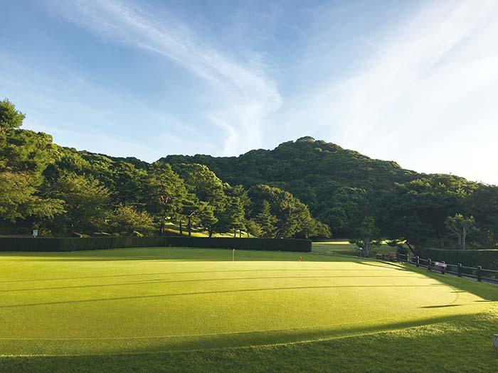 開場から64年。赤松や楠は大木となり、コースに美しい彩りを添える。春には梅、木蓮、桜、梅雨の紫陽花、夏には緑の木陰、秋の紅葉、さらには池の黄水連等、コースの端々に姿を見せてくれる花木の美しさを堪能できるのも、もう一つのゴルフの醍醐味だ
