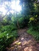Pico De Loro Jump Off Point