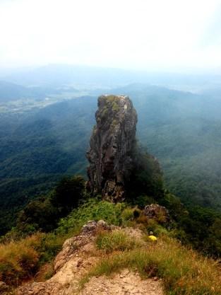 Awesome Pico