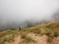 Ascend to Parrot's Peak