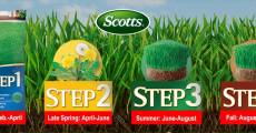 Four Steps to a Lush, Green Lawn
