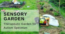 Lancaster-Area Sensory Garden Provides Therapy for Autism
