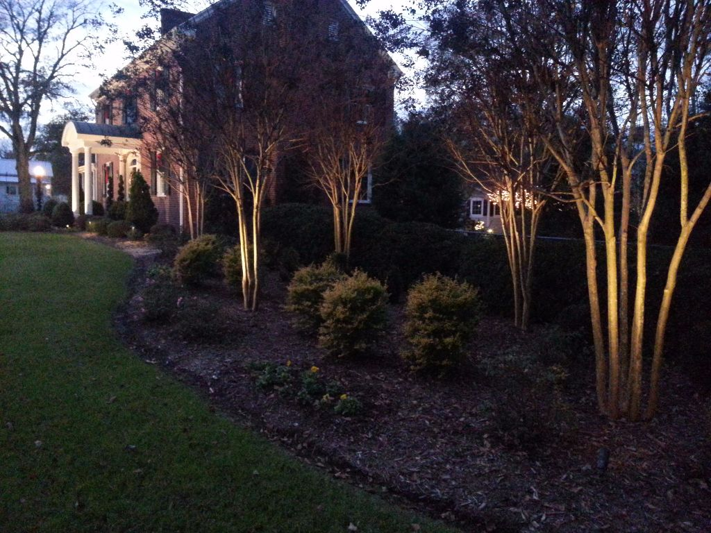 LandscapeLighting-Residential-Williams(10)