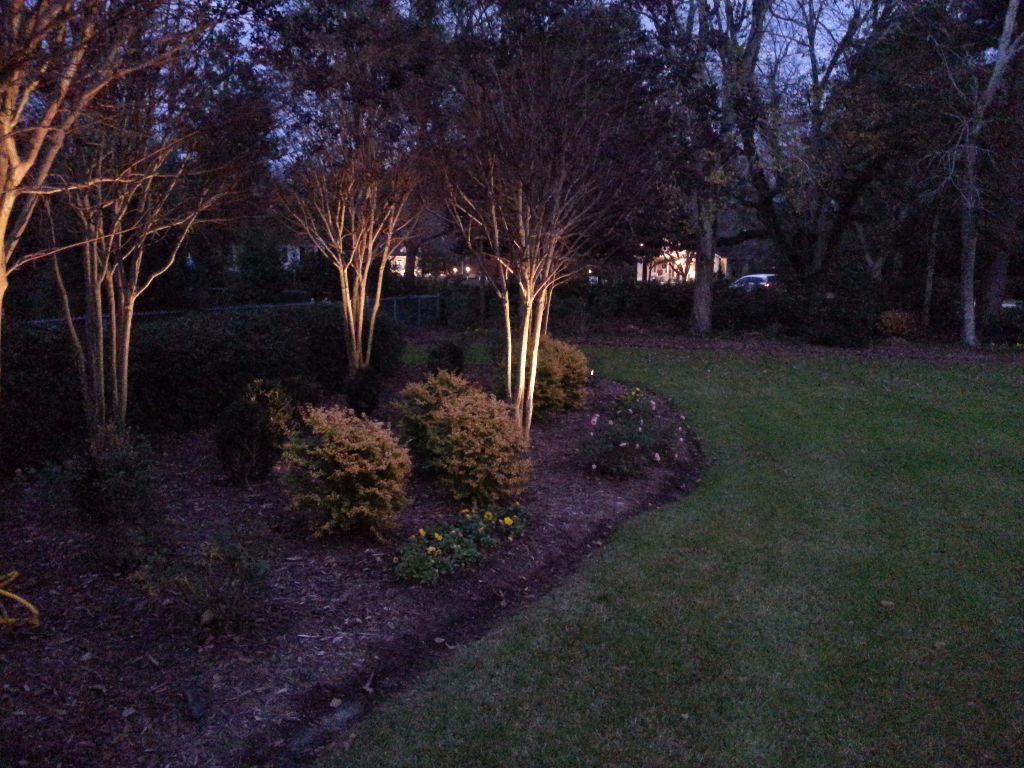 LandscapeLighting-Residential-Williams(11)