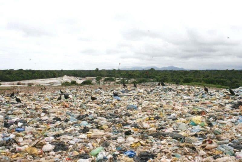 A centralização dos resíduos sólidos no aterro particular em Paranaguá 1