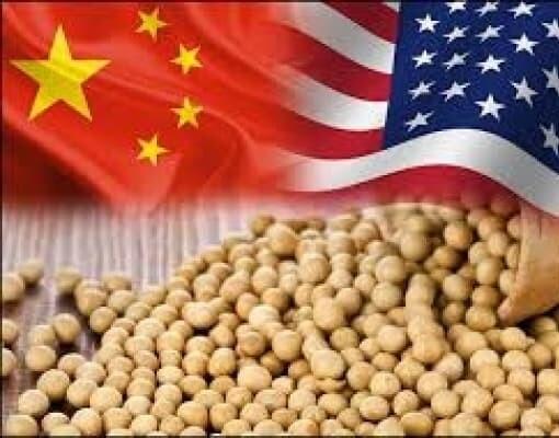 Bloomberg diz que China suspende importação de soja dos EUA 1