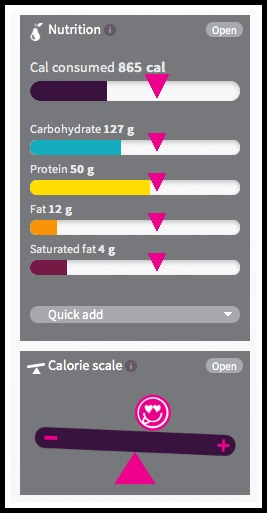 Fitbug nutrition and calorie scale