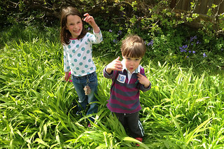 The Seasonal Playground – Garden Activities for Kids and Parents in Spring