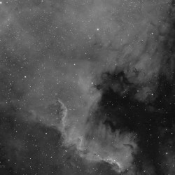 North American Nebula, NGC 7000, Caldwell 20, SH2-117