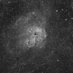 IC 410, Tadpole Nebula