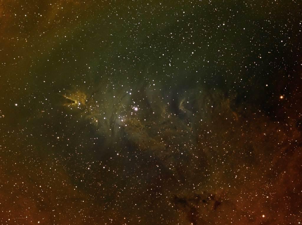 NGC 2264, Christmas Tree Cluster