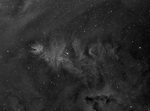 NGC 2264, NGC 2264 Ha, Christmas Tree Nebula Ha