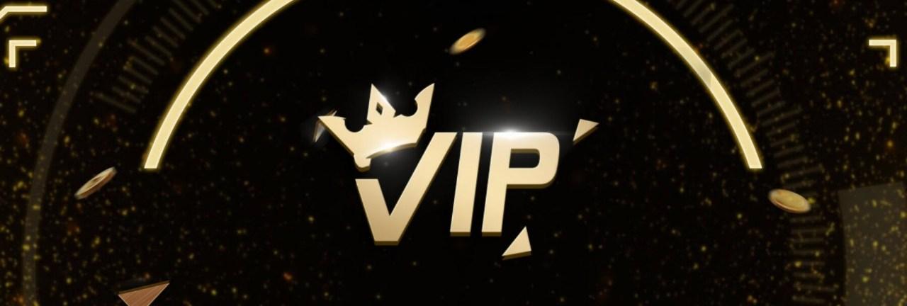 โปรแกรม VIP