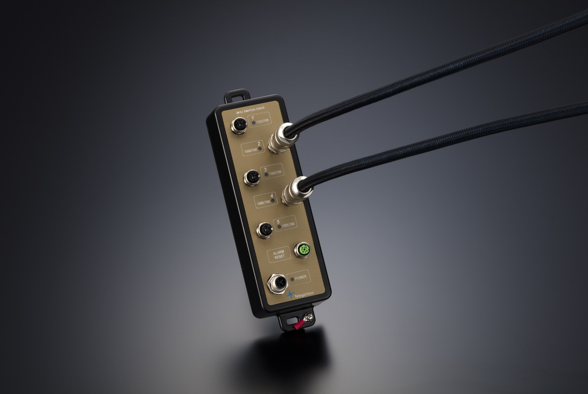 M12 SWITCH GOLD for high-end network audio
