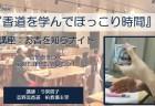 旅がらすの日曜日 ~社寺修復塗師の街並み散策日誌~ 愛知県 岡崎龍城温泉