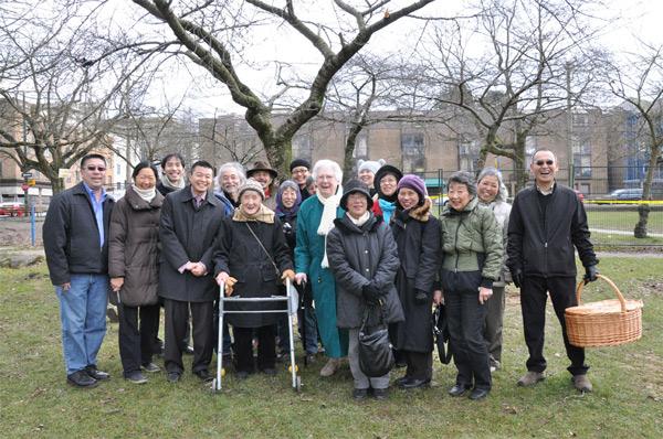 legacy-sakura-group