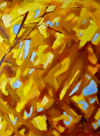 2011 - Huile / Végétal 001