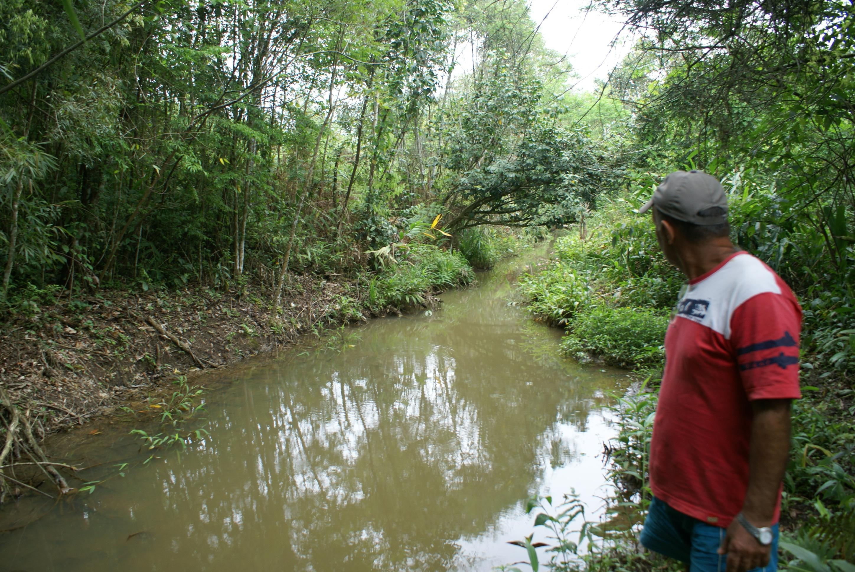Idésio Vicente e a vala que irriga sua plantação de arroz às margens do rio Camboriú