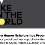 The new Hamer Scholarships Program (2020)