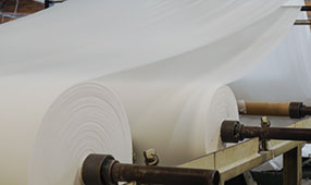 Pulp and Paper