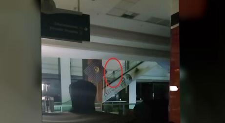 Nas imagens, é possível ver uma menina, ou uma boneca, como sugerem os mais incrédulos, subindo para o outro andar pela escada rolante / Foto: Reprodução