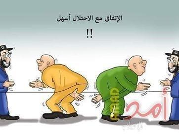 בקהיר שוברים את הראש - איך לרבע את המעגל