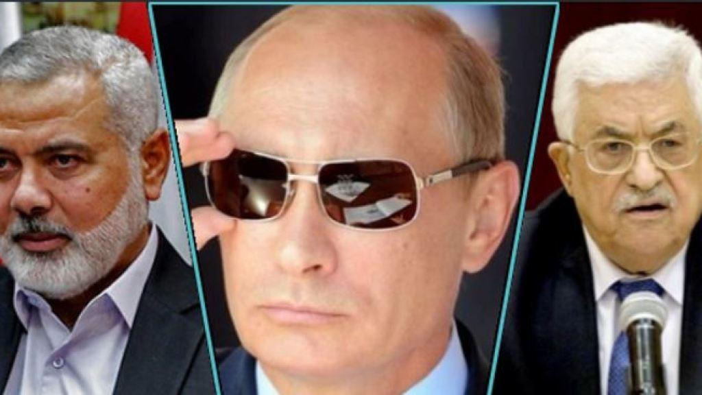 רוסיה מחפש