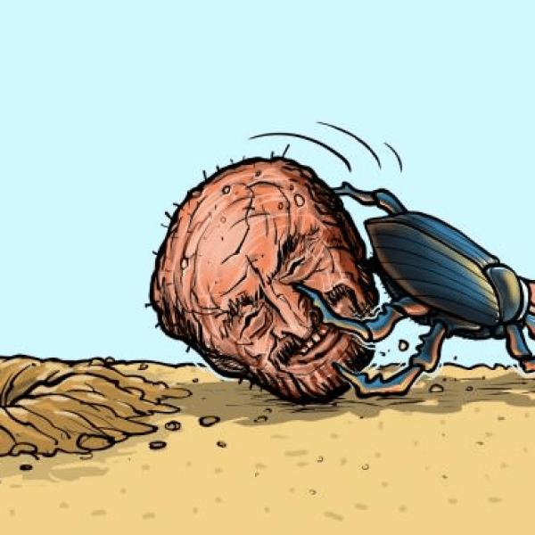 סוריה החדשה? חזרתו של רפעת אלאסד