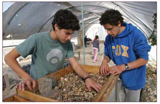 Teenagers and volunteers at the Temple Mount Sifting Project conducted by the archeologists Dr. Gabi Barkai and Yitzchak Zweig at Emek Tsurim in Jerusalem. (courtesy of the City of David, Ancient Jerusalem archive)