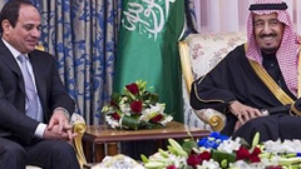 Qatar and the Muslim Brotherhood's Incitement Campaign against Egypt