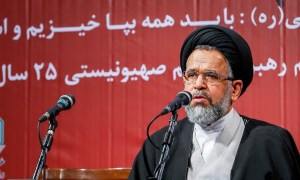 Hujjat al-Islam Sayd Hamuod Alavi