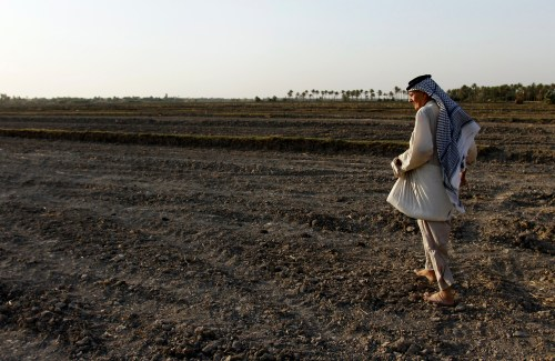 Dry fields after the suspension of the cultivation of water-hungry crops.
