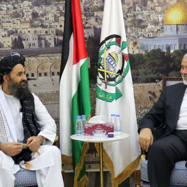 The Taliban's Palestinian Partners: <br />Implications for the Middle East Peace Process