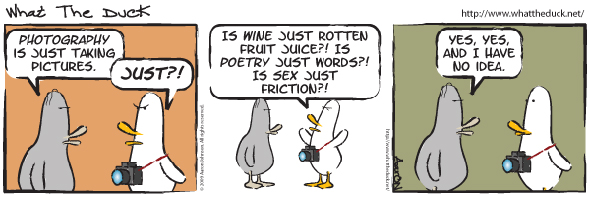 What The Duck Comic Strip