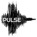Pulse-Final-wht-bkg