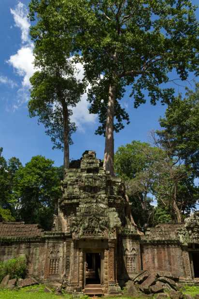 The Ta Phrom Temple