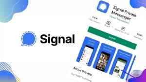 What Is Signal? Why Signal is so Popular?