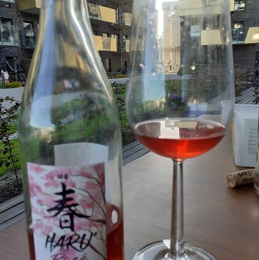 Vins d'été : rosé et compagnie
