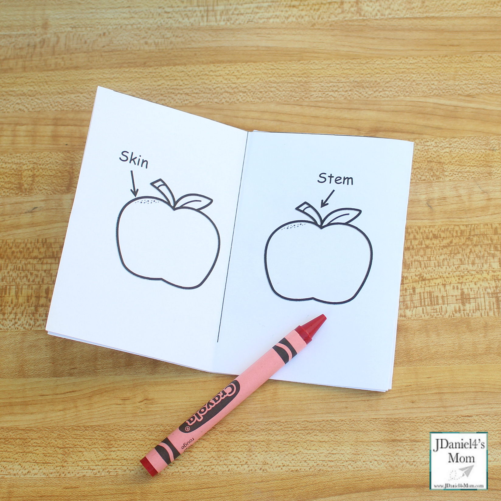 Apple Parts Worksheet