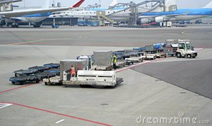 airport-workers-1331543